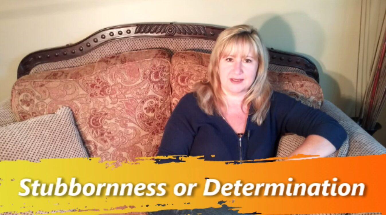 Stubbornness Vrs Determination